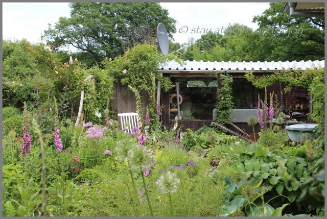 blau-weißer Garten - stay at home and enjoy