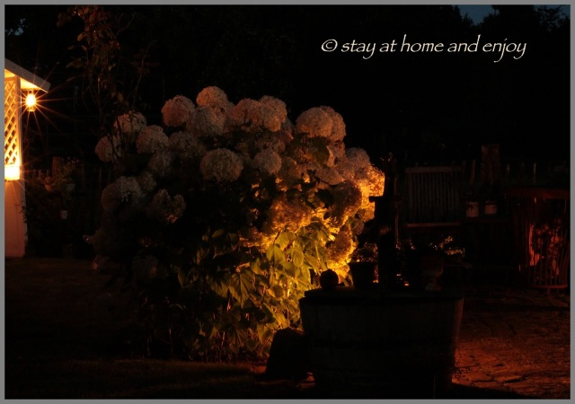 Sommerabend - stay at home and enjoy