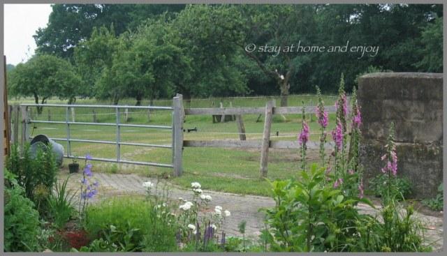 Der Garten - stay at home and enjoy