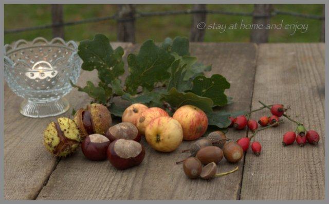 Früchte aus Feld und Flur - stay at home and enjoy