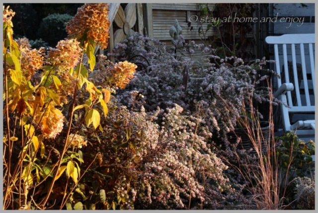 Der erste Frost8 - stay at home and enjoy